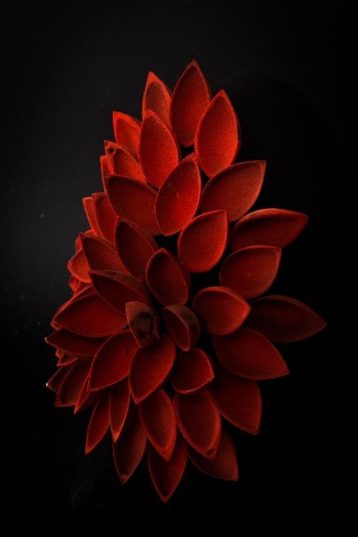 Il Rosso e il Nero VAL_4945